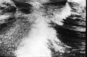 Sjøsprøyt